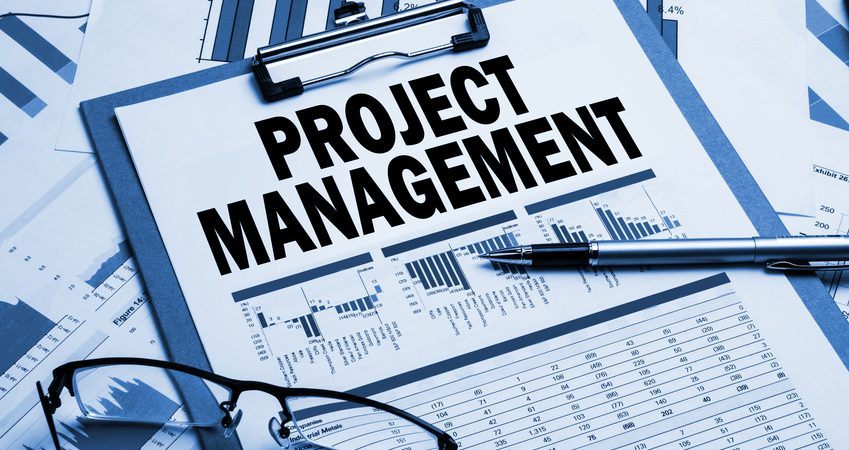 What is Project Management Consulting?
